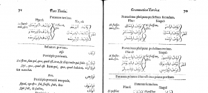 First Turkish Grammar in England - from EEBO; Wing / S2179